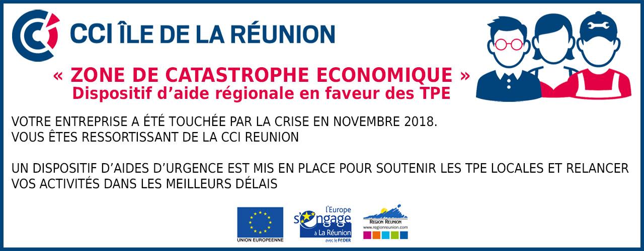 CCI - Chambre de Commerce et d Industrie Ile de La Réunion - CCI Ile ... 2d21c16fed6